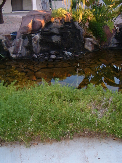 Phoenix Ponds add value to home