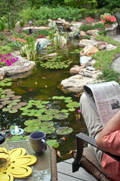 What are the problems with or drawbacks to having an ecosystem pond