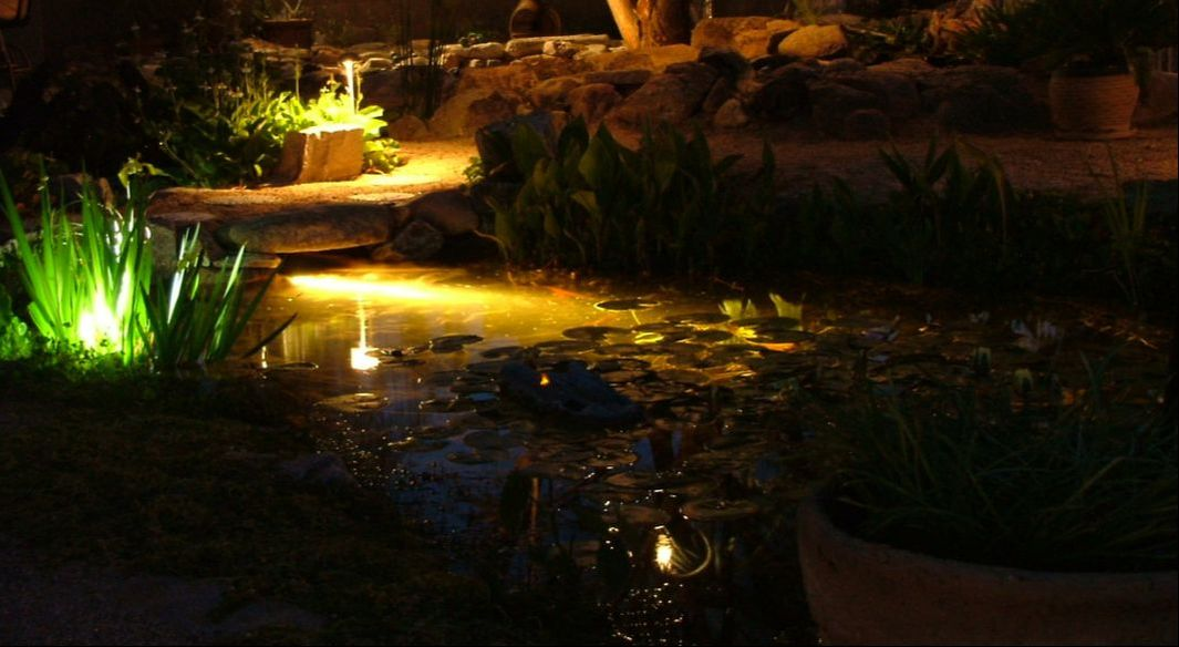 feature lighting ideas. For Water Feature Owners, Backyard Lighting Ideas Include Both Pond And  Landscape Lights. Underwater Lights Allow You To See Fish In The Evening, O