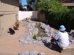 Pet Friendly Phoenix Disappearing Pondless Stream by The Pond Gnome