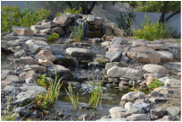 Paradise Valley AZ Disappearing Pondless Stream by The Pond Gnome