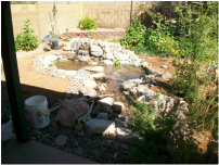 Chandler AZ disappearing pondless stream by The Pond Gnome